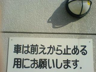 b0010285_5465055.jpg