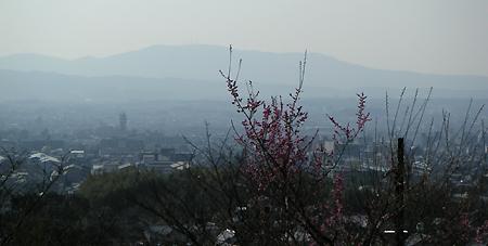 白毫寺からの眺望_b0008289_21374894.jpg