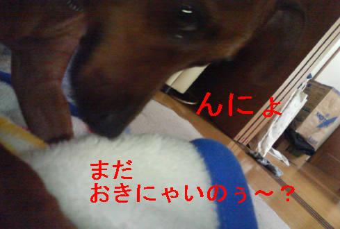 f0123589_10185425.jpg