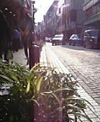 横浜日記2_c0060412_16381924.jpg
