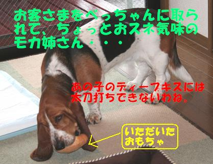 f0121712_1595266.jpg