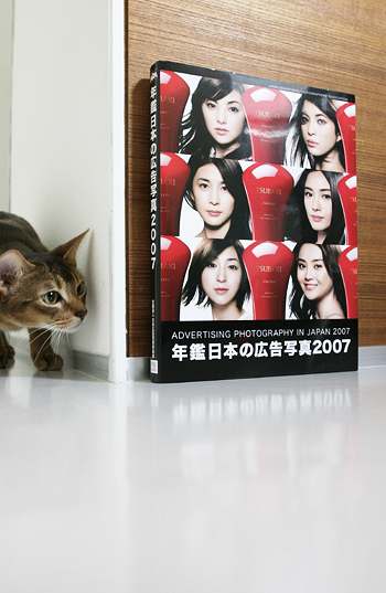 [猫的]苦節二十ウン年_e0090124_874041.jpg