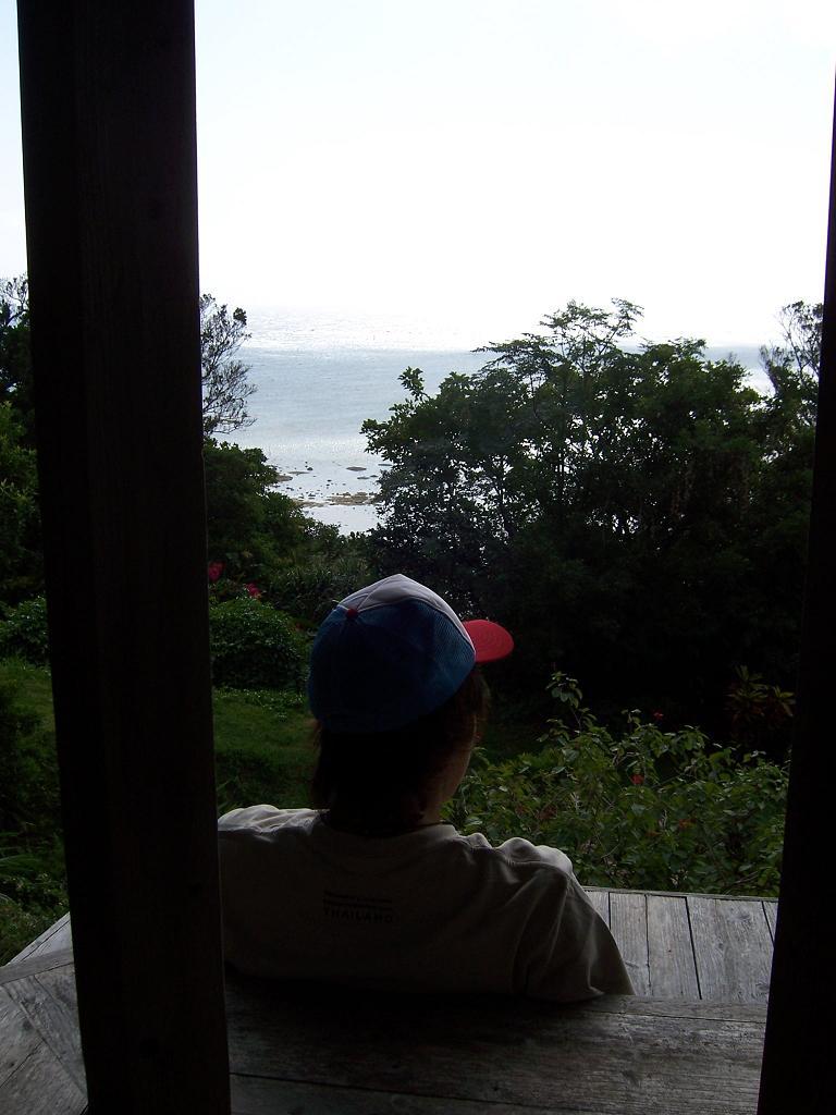 kaiza(海坐)の森_d0100638_2114966.jpg