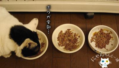 食べない日_e0031853_11445991.jpg
