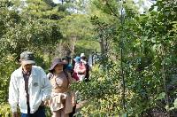 「高齢者林間学校モデル2」_c0108460_2340088.jpg