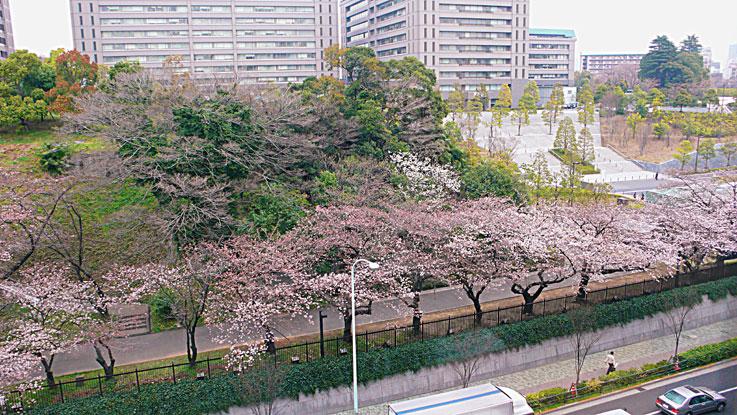 春宵や っっっっっっ✿ฺ´☆`✿ฺ_a0031363_13405637.jpg