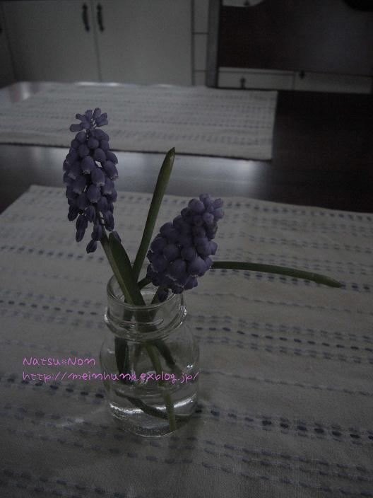 f0114503_18332725.jpg