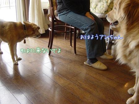 f0064906_16355267.jpg