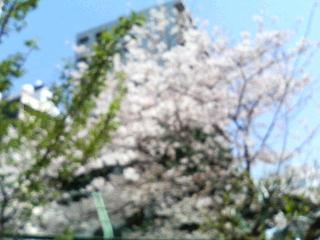 Re:らーめん山田_c0025217_205915.jpg
