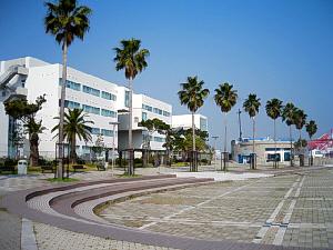 パーク内の敷地に建つ丸い建物、そして隣接する敷地には神戸国際大学の白い建物が建っています。椰子の木が規則正しく配置され、南国のリゾート地のような雰囲気があります。