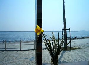 窓辺には花一輪花瓶に挿してありました。目の前が海の光景は、雰囲気だけは高級リゾート地ですよ。