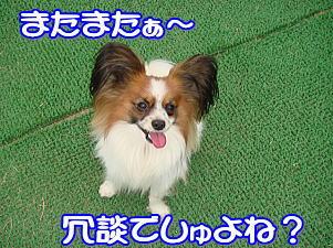 f0011845_18375.jpg