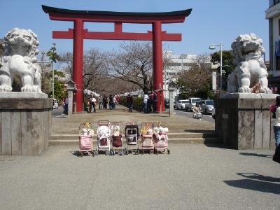 2007.3.26 鎌倉&江の島へお出かけ_b0001465_17244546.jpg