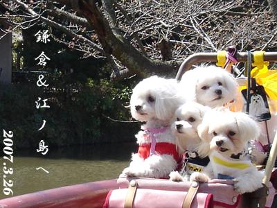 2007.3.26 鎌倉&江の島へお出かけ_b0001465_177142.jpg