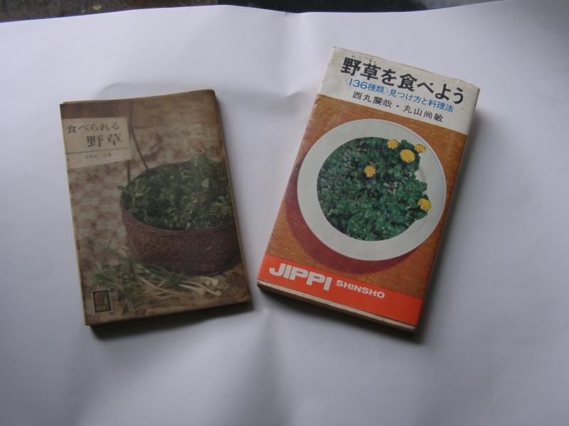 食べられる野草を採った思い出_a0074069_10381188.jpg