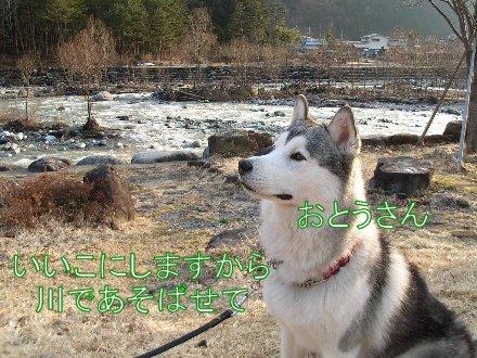 f0112407_1515637.jpg