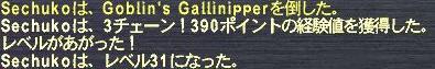 f0105408_1163259.jpg