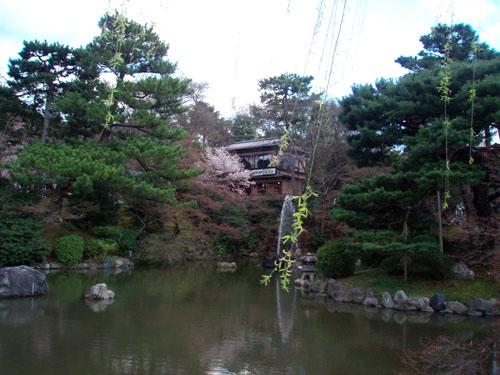 京都 円山公園_e0048413_16133627.jpg