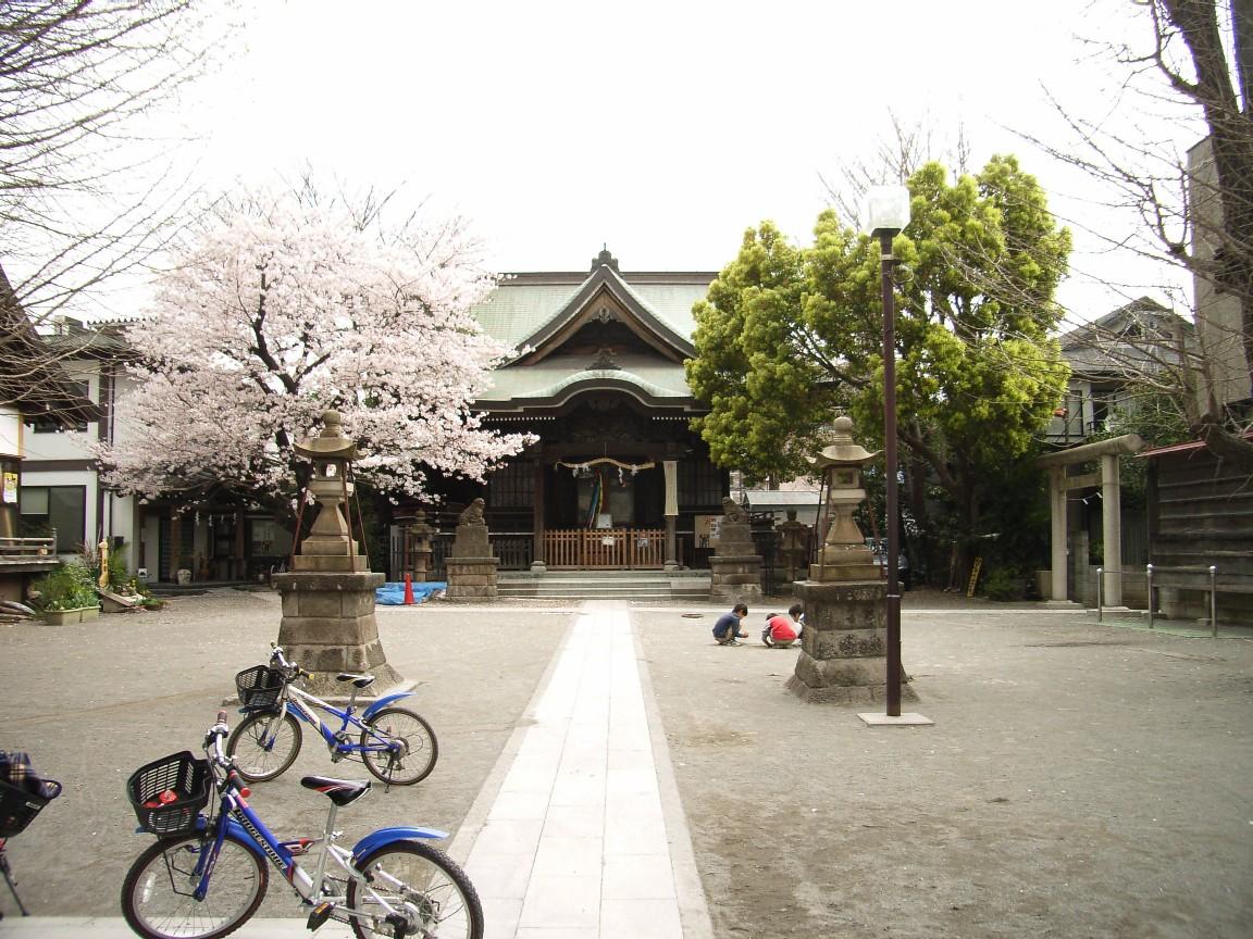 桜花散る 最後を飾る_d0091021_22153311.jpg