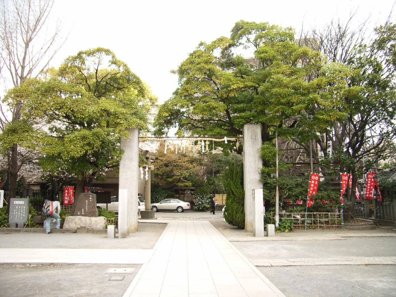 桜花散る 最後を飾る_d0091021_2227779.jpg