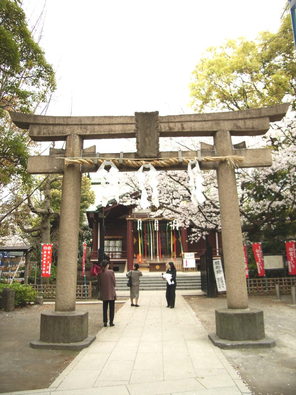 桜花散る 最後を飾る_d0091021_22332747.jpg