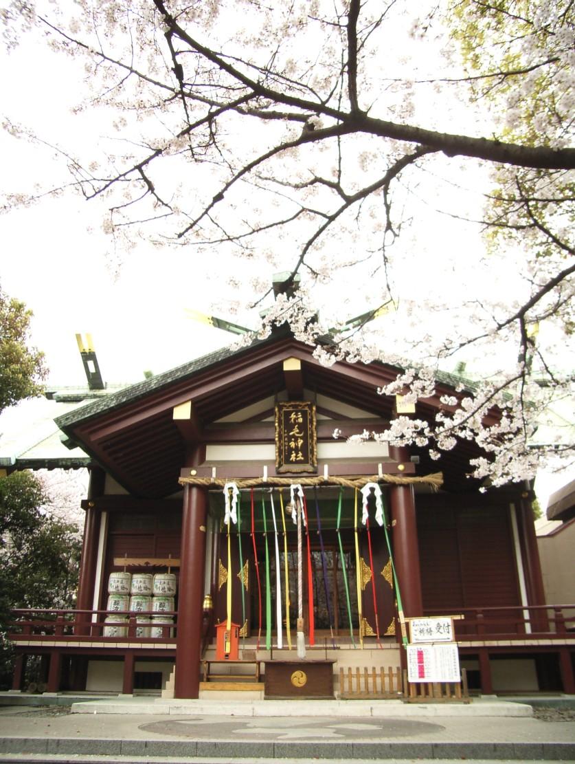 桜花散る 最後を飾る_d0091021_2242470.jpg