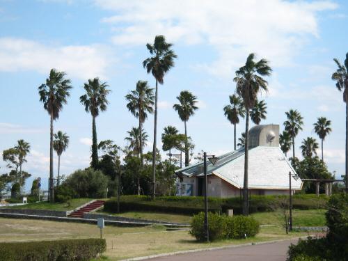 公園の中の建物を取り巻くように植えてある椰子の木。ここだけ切り取るとどこか南国の風景のようです。椰子の木が青い空に映えています。