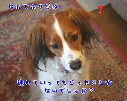 d0013149_0553446.jpg