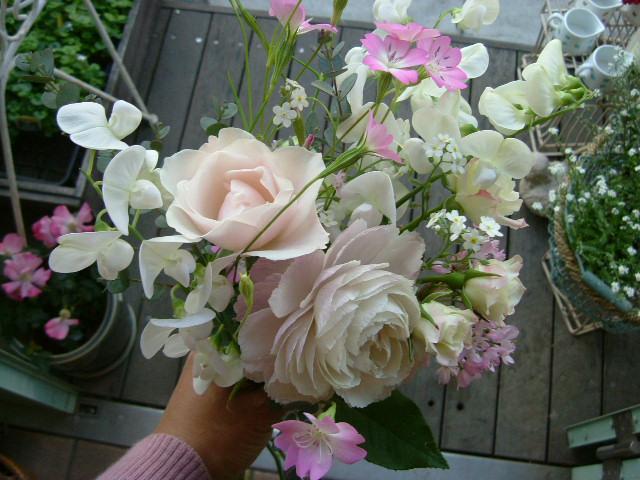 オークリーフ(花摘み)_f0049672_1214056.jpg