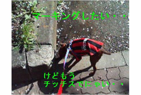f0123589_16572557.jpg