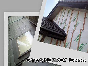 b0036205_649651.jpg