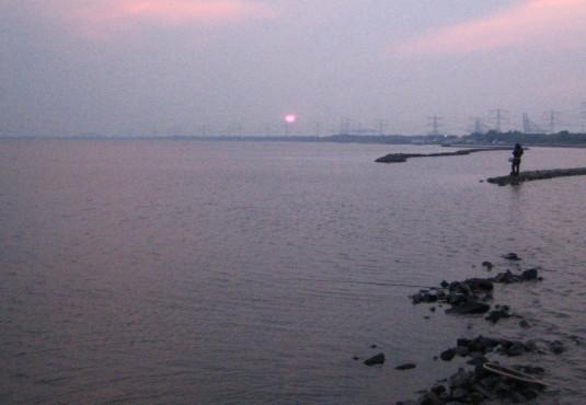 ロッテルダム汽水湖にて (2007年3月末)_c0071305_17432362.jpg