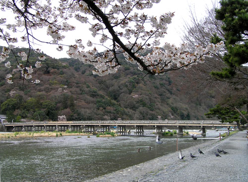 嵐山と亀山公園_e0048413_21504689.jpg