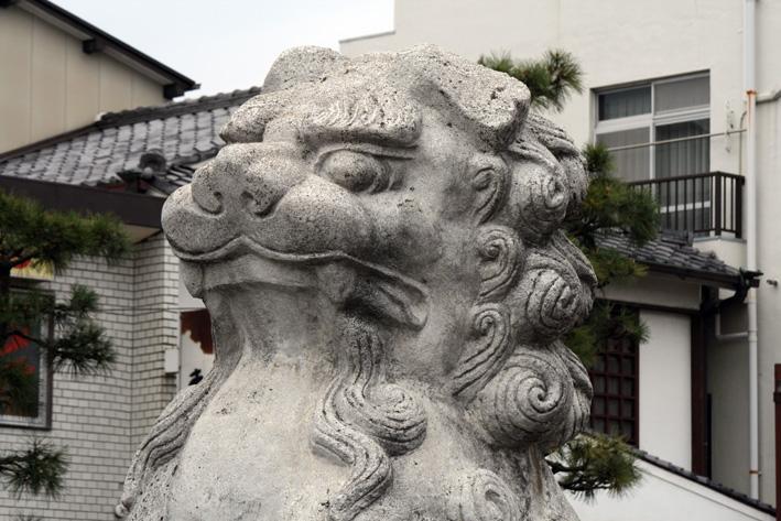 桜前線〈番外編〉〜鎌倉・段葛_c0035838_22564299.jpg