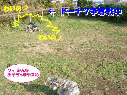 d0048951_16493185.jpg