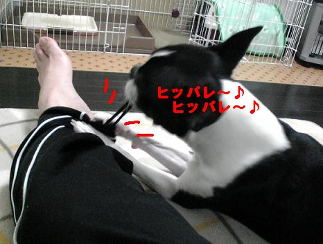 c0092097_22461747.jpg