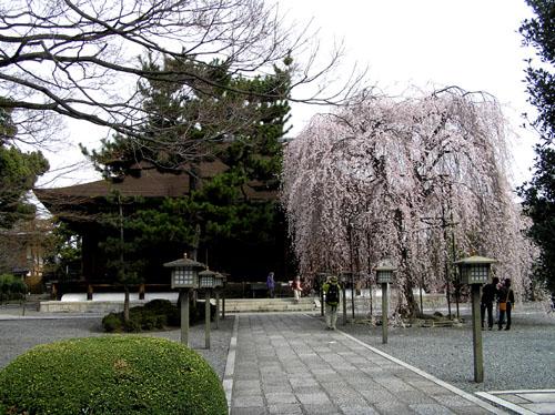 京都 大報恩寺_e0048413_22472558.jpg