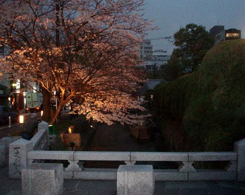 京都 高瀬川_e0048413_23304516.jpg