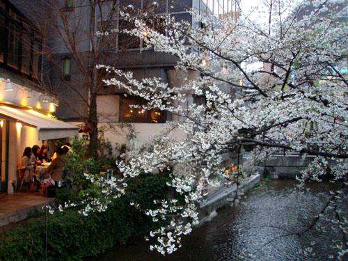 京都 高瀬川_e0048413_23312175.jpg