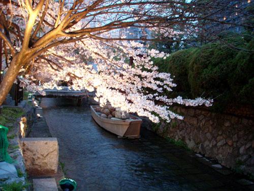 京都 高瀬川_e0048413_2331392.jpg