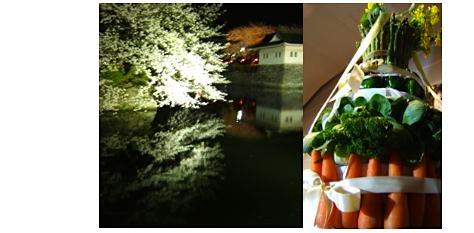 桜の満開の木の下で_c0004024_1613549.jpg