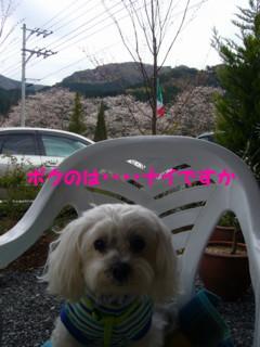 f0005727_16371975.jpg