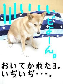 桜よ今年もMerci~♪_d0087483_220883.jpg