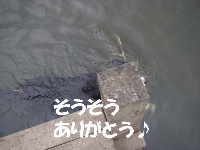 f0114893_101734100.jpg