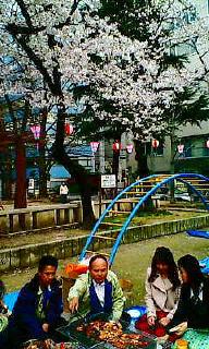 春宵桜の宴_d0110911_9563378.jpg