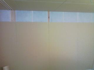 壁ボード張り_d0099449_15453522.jpg