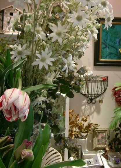 オークリーフ(白い花)_f0049672_1231358.jpg