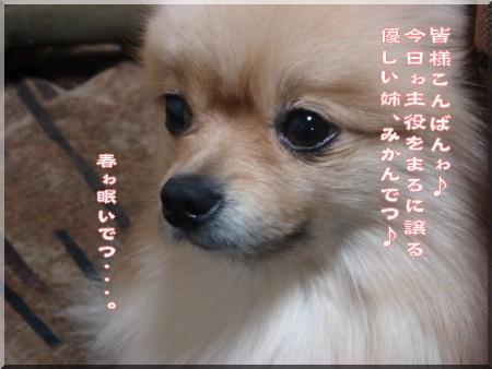 b0078073_17222946.jpg