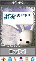 a0005381_17352421.jpg