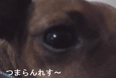 f0123589_14103330.jpg